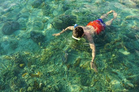 Corals Palawan