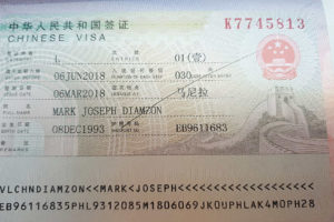 Chinese Tourist Visa Application